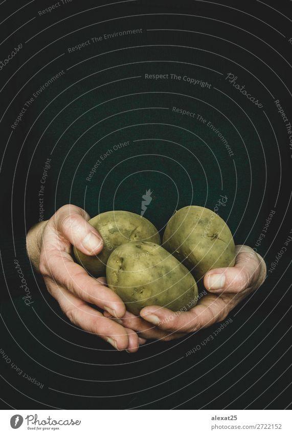 Frauenhände halten Kartoffeln fest Lebensmittel Gemüse Garten Erwachsene Hand Natur Pflanze frisch natürlich Hintergrund Bauernhof Landwirt Feld Ernte