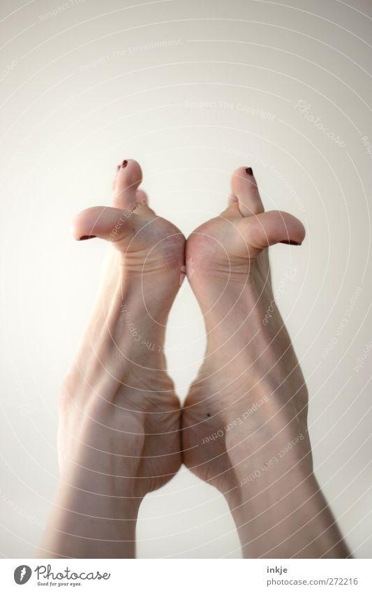 Morgengymnastik Mensch Sport Leben Bewegung Fuß Freizeit & Hobby Fitness sportlich machen Symmetrie beweglich Barfuß Zehen Turnen spreizen gelenkig