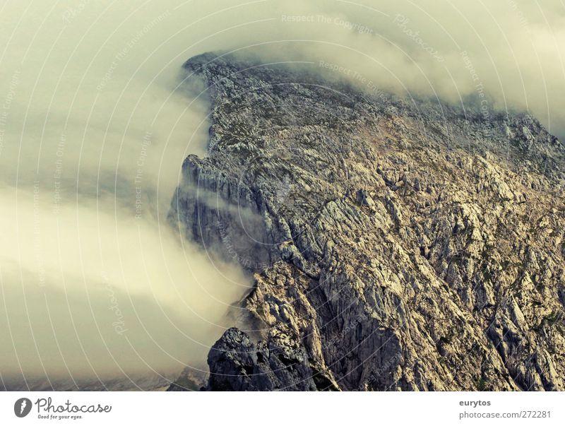 The Fog Natur Ferien & Urlaub & Reisen Pflanze Tier Umwelt Landschaft Berge u. Gebirge Wetter Felsen fliegen Klima Nebel Alpen Klimawandel schlechtes Wetter