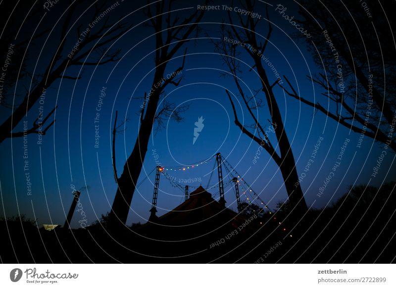 Cabuwazi Abend mehrfarbig Dekoration & Verzierung Dämmerung Licht Lichterkette Nacht Show Zirkuszelt Menschenleer Textfreiraum bau Baumstamm Ast Zweig Himmel