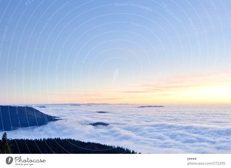 Heiter bis wolkig Natur Himmel Wolken Horizont Sonnenaufgang Sonnenuntergang Schönes Wetter Wald Berge u. Gebirge Gipfel frei Unendlichkeit hell hoch schön blau