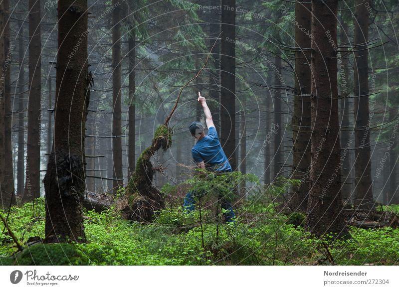Weltenbummler.... Mensch Mann blau grün Baum Erwachsene Wald dunkel Freundschaft sitzen Nebel außergewöhnlich Zukunft beobachten Kommunizieren Mütze