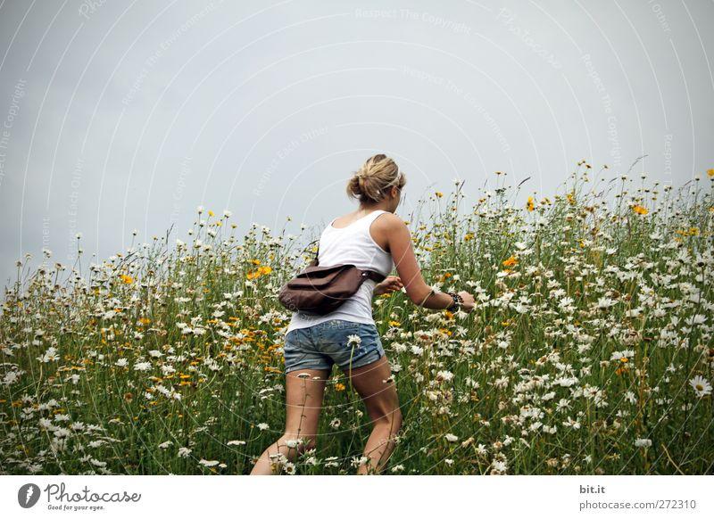 Wiesnstürmer Mensch Himmel Natur Jugendliche Sommer Pflanze Blume Wolken Erwachsene Umwelt Wiese feminin Frühling Gras Junge Frau Blüte