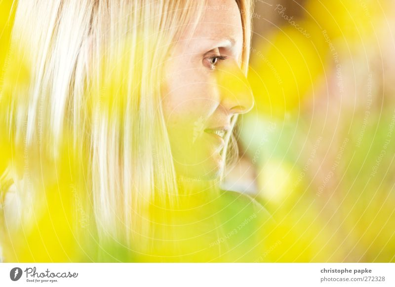 Durch die Blume gesehen feminin Junge Frau Jugendliche Gesicht 1 Mensch 18-30 Jahre Erwachsene Pflanze Blüte Blühend sprechen ästhetisch blond schön