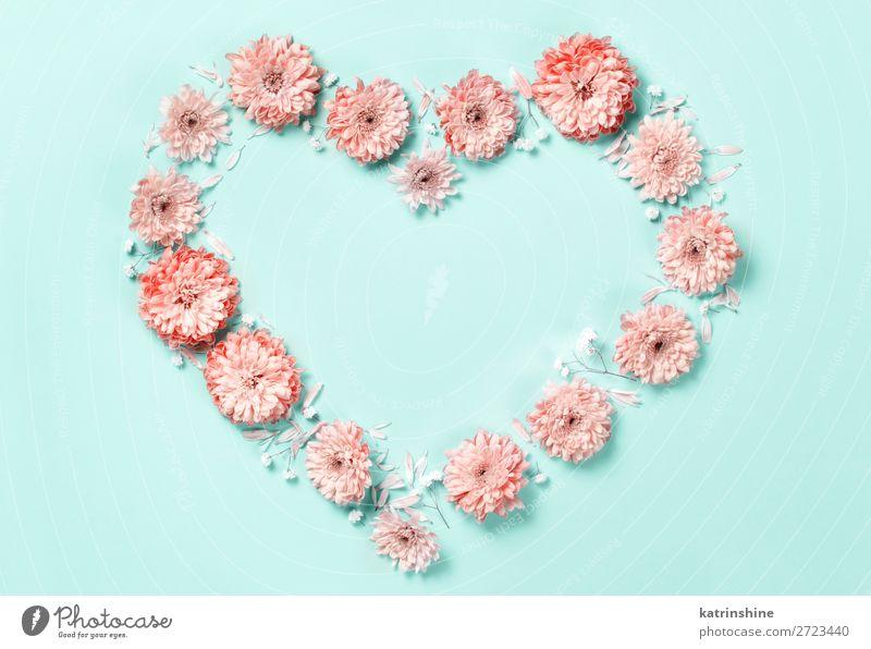 Herzzeichen aus Korallenblüten Design Dekoration & Verzierung Hochzeit Frau Erwachsene Mutter Kunst Blume oben rosa Kreativität Hintergrund Postkarte