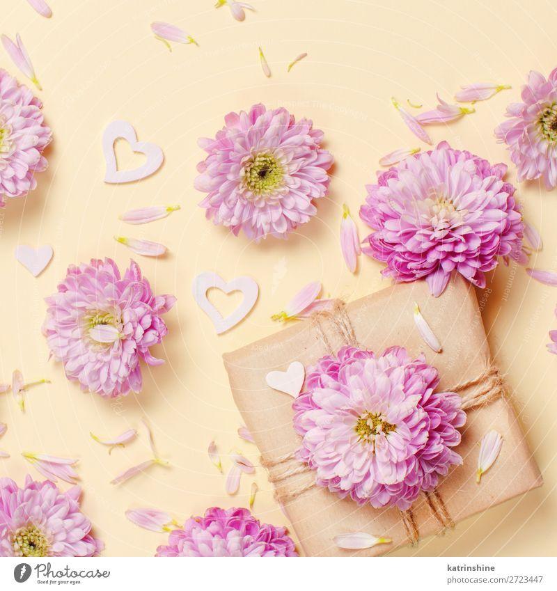 Frau Blume Erwachsene gelb Kunst rosa oben Design Dekoration & Verzierung Kreativität Geschenk Hochzeit Mutter Postkarte Blütenblatt Entwurf