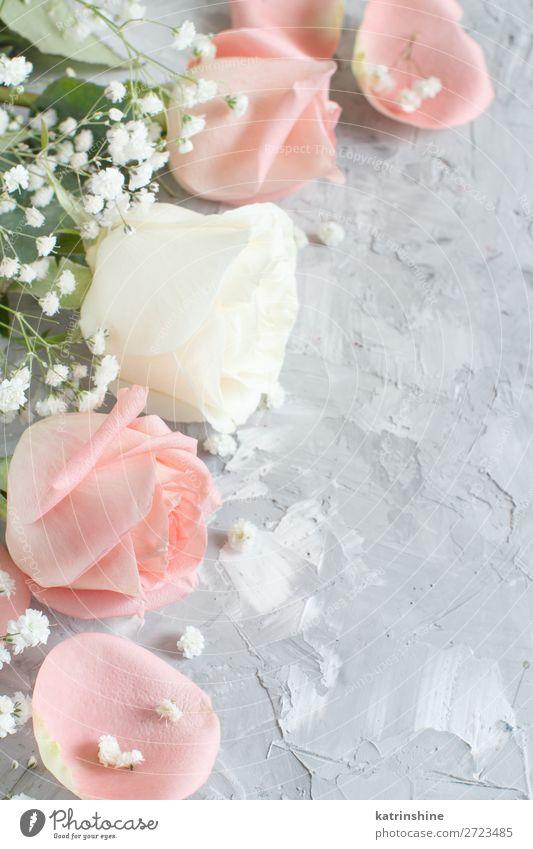 Rosa und cremefarbene Rosen schön Dekoration & Verzierung Valentinstag Hochzeit Handwerk Frau Erwachsene Blume Blüte Holz klein grau neutral Pastell romantisch
