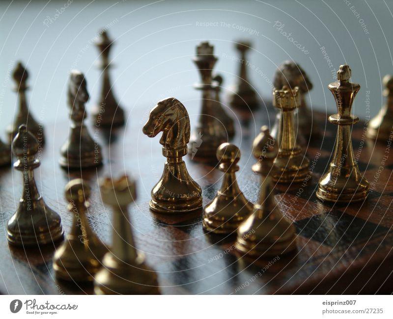 Schach Schachbrett Schachfigur