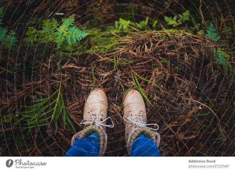 Nahaufnahme einiger Stiefel im Wald Feldfrüchte Herbst Mensch Natur Beine Schuhe Anschnitt Park Blatt Außenaufnahme Fuß Hintergrundbild gelb Jahreszeiten