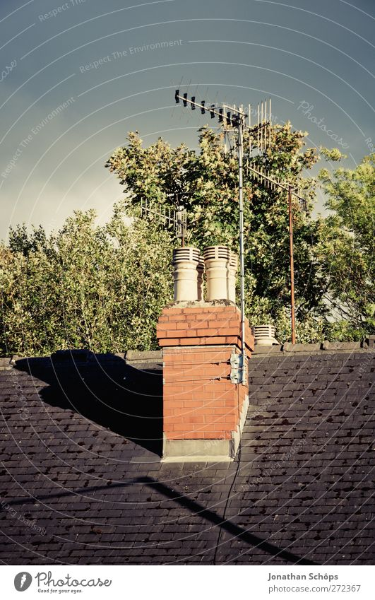 britische Dächer II Himmel Stadt Baum Sonne Haus ästhetisch Häusliches Leben Dach Technik & Technologie Fernsehen Backstein Baumkrone Schornstein England Wohnhaus Antenne