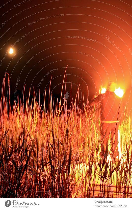 Zum Boddenhof Mensch maskulin Mann Erwachsene Körper 1 Natur Landschaft Himmel Mond Pflanze Sträucher Seeufer leuchten Feuer Farbfoto Außenaufnahme Experiment