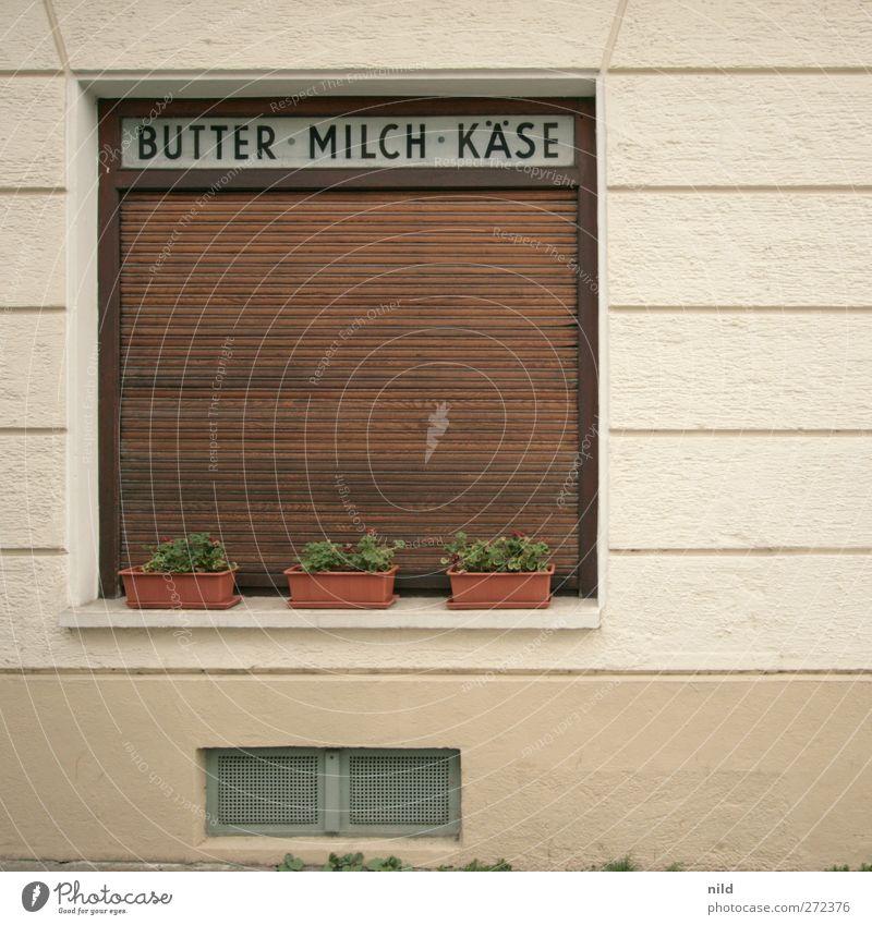 BUTTER • MILCH • KÄSE alt Stadt Pflanze Haus gelb Fenster Wand Holz grau Mauer braun Fassade geschlossen Lebensmittel Schilder & Markierungen Schriftzeichen