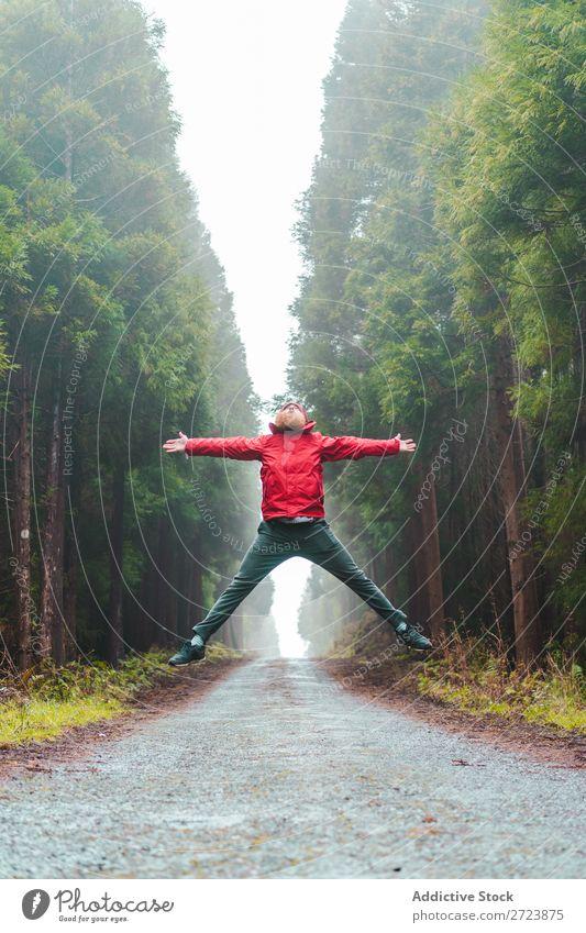 Mann, der auf der Straße im Wald springt. Tourist Natur bärtig springen rot Jacke Wege & Pfade grün Ferien & Urlaub & Reisen Abenteuer Landschaft Azoren wandern