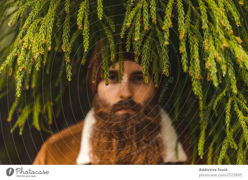 Bartiger Mann am grünen Baum stehend Tourist Natur Blick in die Kamera Wald Ferien & Urlaub & Reisen