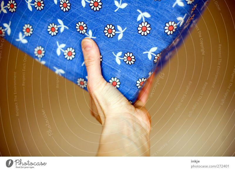 Blumen schmücken das Leben blau Hand weiß rot Freude Spielen oben Bewegung braun Stimmung Freizeit & Hobby Dekoration & Verzierung niedlich Spitze weich Güterverkehr & Logistik