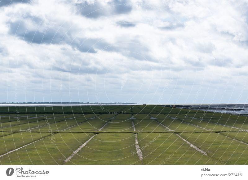 Helmsand Umwelt Natur Landschaft Erde Himmel Wolken Frühling Sommer Schönes Wetter Wind Küste Nordsee entdecken nachhaltig natürlich blau grau grün Sehnsucht