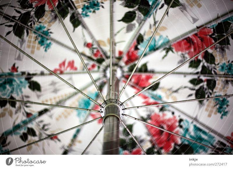 Blumen schmücken das Leben... Ferien & Urlaub & Reisen Sommer Stil Linie Stimmung Metall Streifen Schutz Innerhalb (Position) Netzwerk nah Regenschirm Schirm