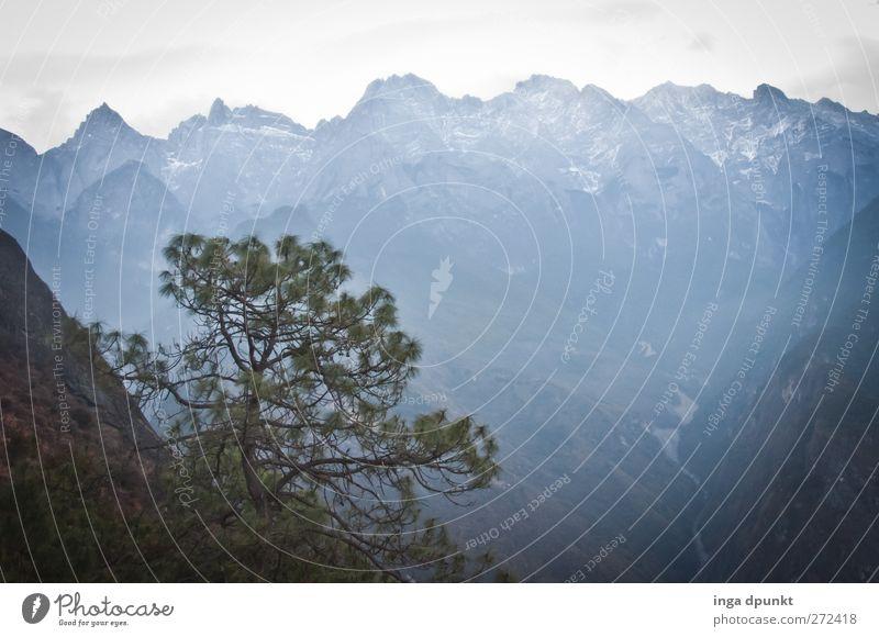 Abgründe Natur blau Baum Pflanze Wolken Umwelt Landschaft dunkel kalt Berge u. Gebirge Erde Felsen außergewöhnlich Urelemente bedrohlich China