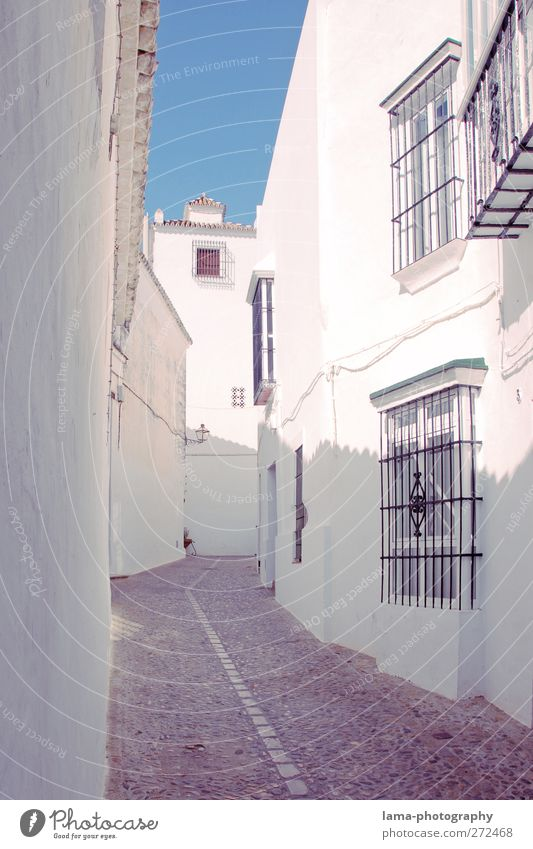 Streets of Andalusia [XLVIII] weiß Haus Wand Wege & Pfade Mauer hell Fassade Dorf Spanien Stadtzentrum Gasse Altstadt mediterran Andalusien Fischerdorf
