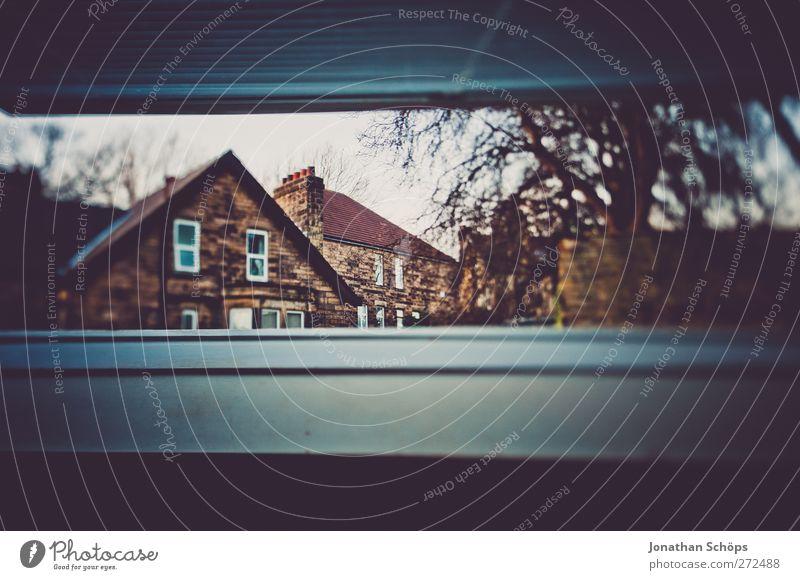 britischer Dachfensterausblick II blau Baum Haus Fenster dunkel kalt Stein ästhetisch Häusliches Leben bedrohlich beobachten gruselig türkis England kahl