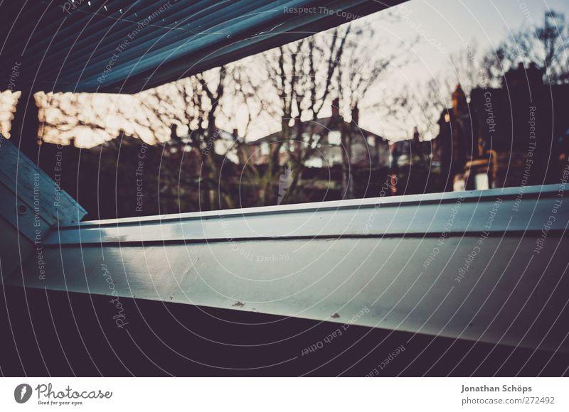 britischer Dachfensterausblick III Stadt Baum Haus Fenster dunkel kalt ästhetisch Häusliches Leben beobachten Aussicht geheimnisvoll türkis Neigung