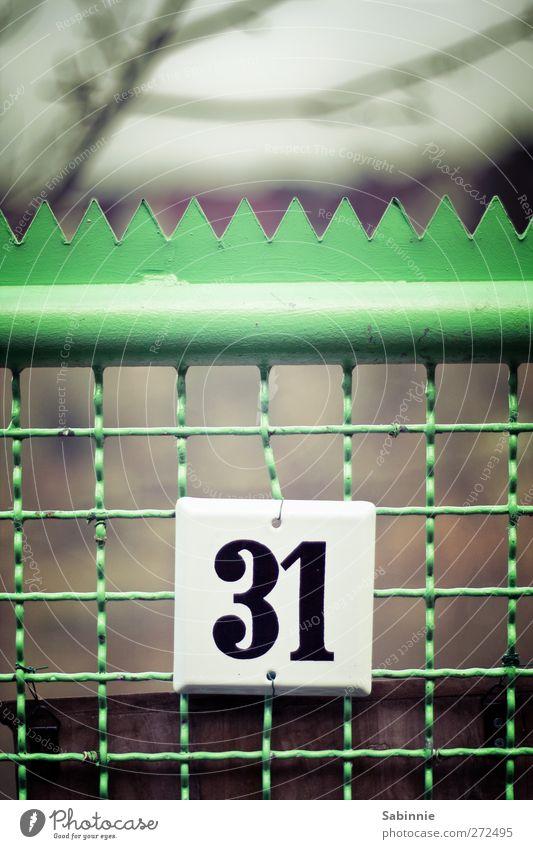 31 Zaun Holzpfahl Tor Gartentor Hausnummer grün schwarz weiß Biegung Spitze Ziffern & Zahlen Schilder & Markierungen Schriftzeichen Farbfoto mehrfarbig