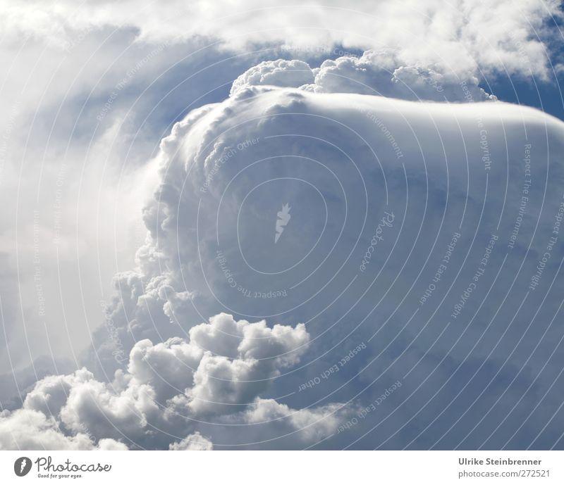 The Cloud Umwelt Urelemente Luft Wasser Himmel Wolken Gewitterwolken Sommer Schönes Wetter schlechtes Wetter Unwetter fliegen hängen leuchten bedrohlich dick