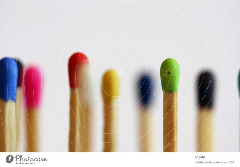multikulti again Farbe Holz mehrere stehen viele Team Zusammenhalt Gesellschaft (Soziologie) Teamwork Verschiedenheit vertikal Streichholz Mischung Integration Auswahl Vielfältig