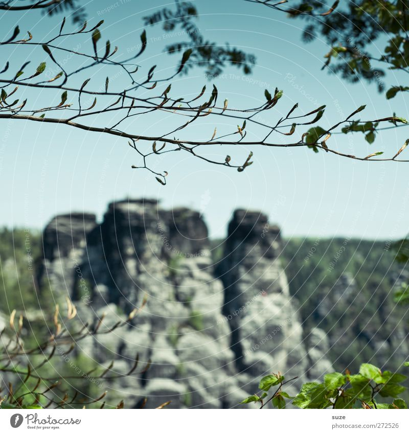 ASTchen Ferien & Urlaub & Reisen Tourismus Umwelt Natur Landschaft Pflanze Urelemente Himmel Wolkenloser Himmel Frühling Klima Schönes Wetter Baum Felsen