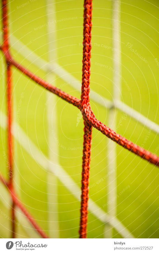 Mit Netz und doppeltem Boden grün rot Sport Symmetrie Fußballtor 2 doppelt gemoppelt Synthese Knoten Knotenpunkt Vor hellem Hintergrund Farbfoto Außenaufnahme