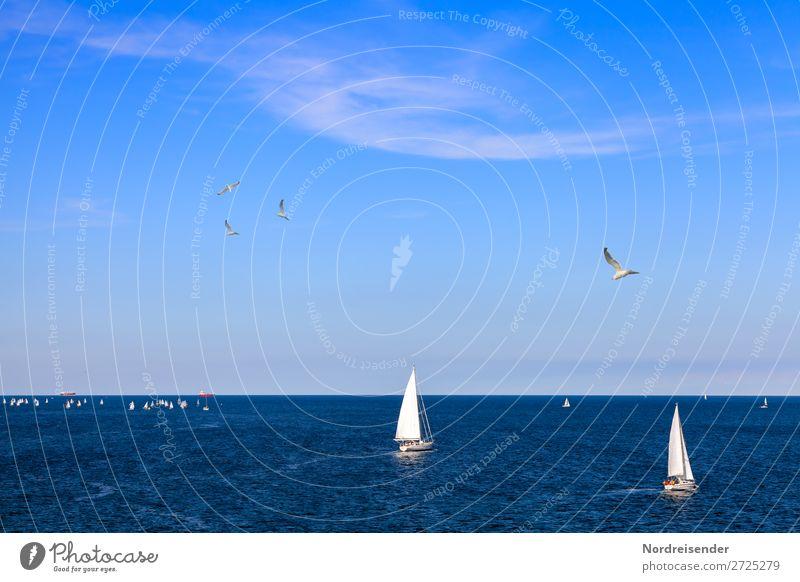 Segelschule vor Warnemünde an der Ostsee Freizeit & Hobby Ferien & Urlaub & Reisen Tourismus Freiheit Sightseeing Sommer Sommerurlaub Meer Sport Wassersport