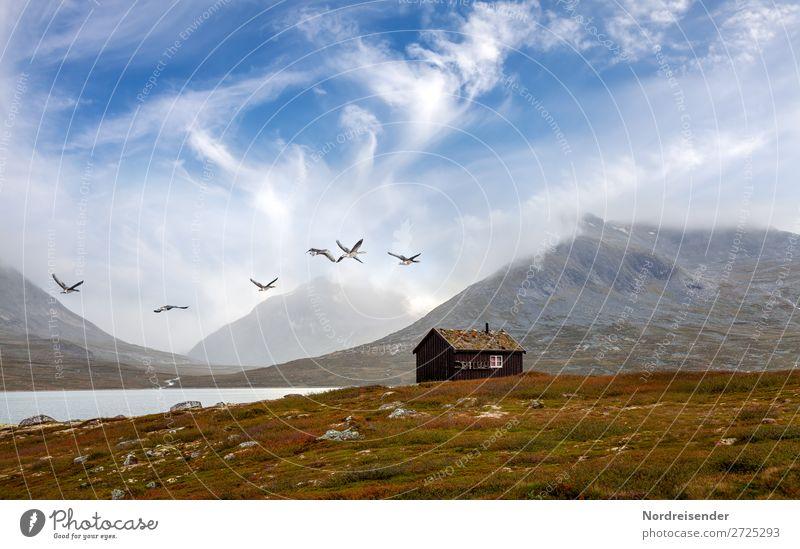 Die Wildgänse kommen Himmel Ferien & Urlaub & Reisen Natur Sommer Landschaft Haus Erholung Wolken Berge u. Gebirge Frühling Wiese Gras Freiheit See Vogel Felsen