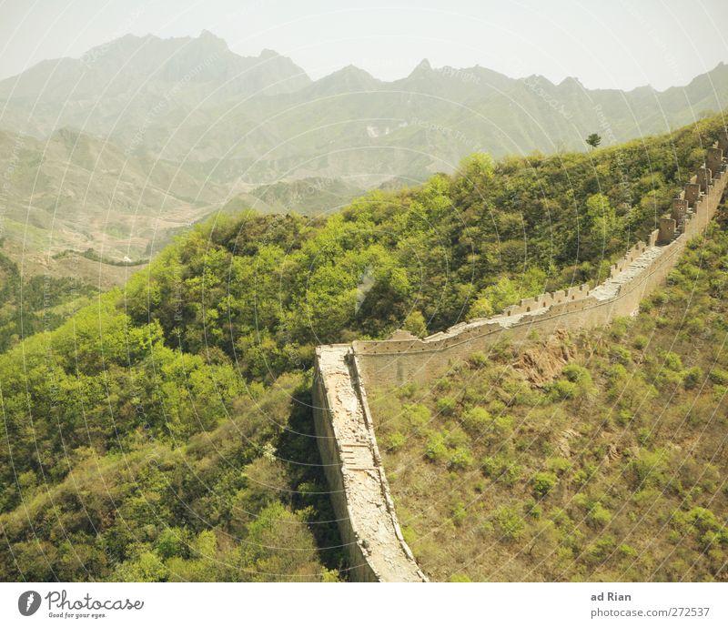 Abgrenzung Natur Landschaft Frühling Schönes Wetter Baum Gras Sträucher Feld Wald Hügel Felsen Berge u. Gebirge China Ruine Turm Bauwerk Architektur Mauer Wand