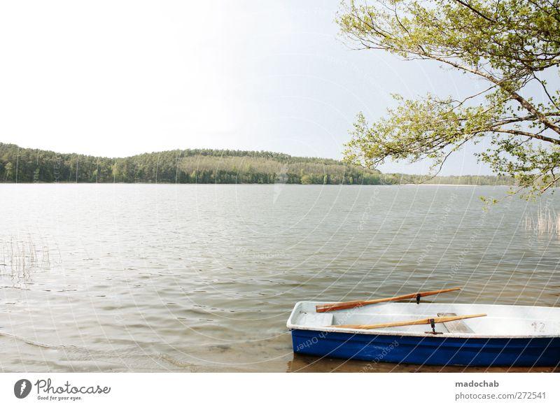 Seen & gesehen werden Natur Wasser Ferien & Urlaub & Reisen Sommer ruhig Erholung Umwelt Landschaft Küste Glück Stimmung Zufriedenheit Tourismus ästhetisch