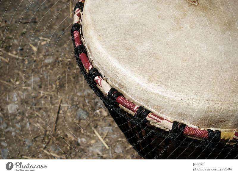 Djembe Freizeit & Hobby Musik Schlagzeug Trommel Trommelfell Afrikanische Trommel Instrument Musikinstrument Musik hören natürlich rund braun Warmherzigkeit