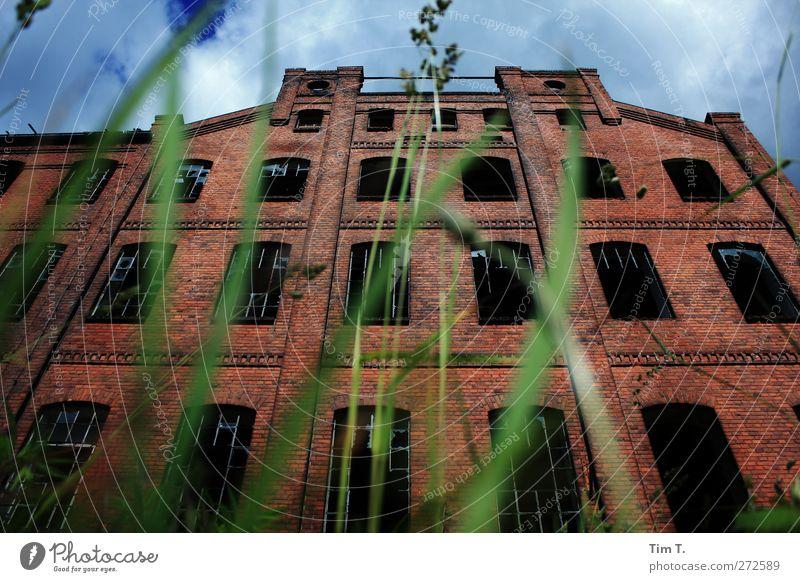 Weberei im Schlaf Gras Dorf Menschenleer Haus Industrieanlage Fabrik Ruine Bauwerk Gebäude Architektur Mauer Wand Fassade Fenster Nostalgie Vergangenheit