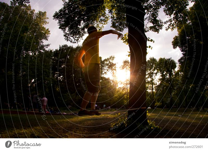 parkchillen Freizeit & Hobby Sport Mensch Junger Mann Jugendliche Leben 1 Natur Sonne Sommer Baum Park Wiese leuchten ruhig Leichtigkeit Funsport Gleichgewicht