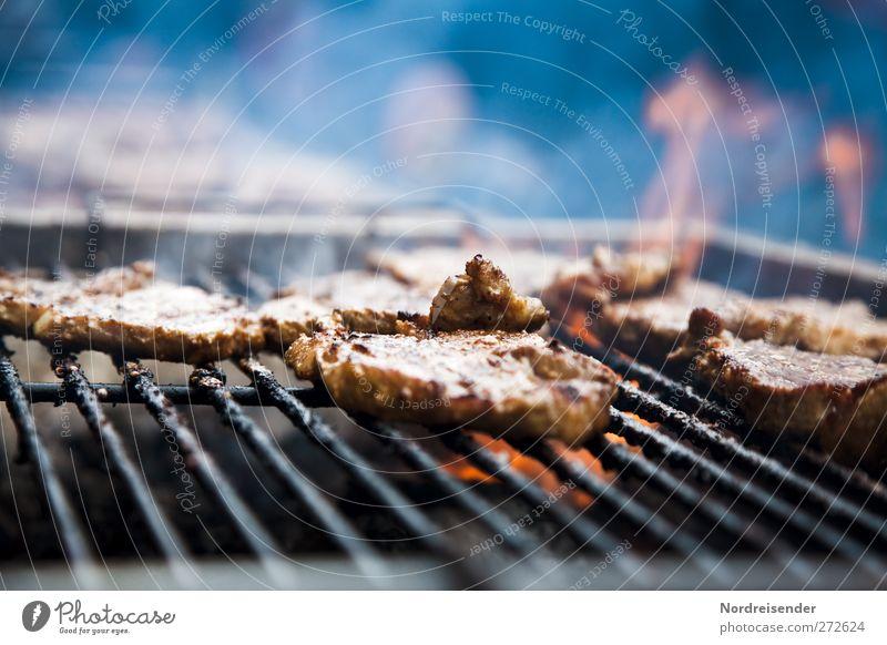 Wie wird das Grillwetter? Lebensmittel Fleisch Ernährung Rauch Duft saftig Völlerei Steak Rostbraten Grillrost Grillen Grillkohle Grillsaison Flamme Cholesterin