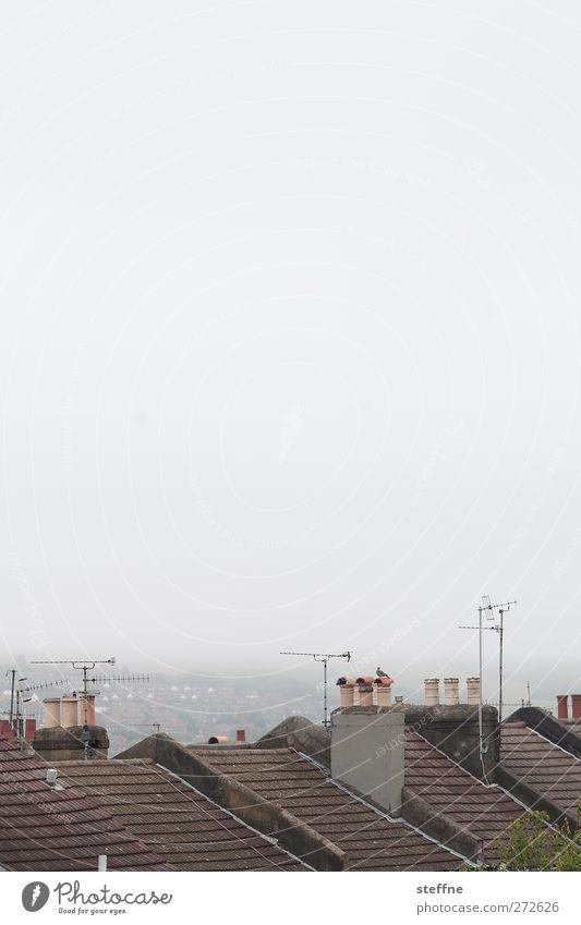 schönes Wetter in England Himmel schlechtes Wetter Nebel Brighton Hafenstadt Skyline Haus Einfamilienhaus Dach Schornstein Antenne trist ruhig Gedeckte Farben