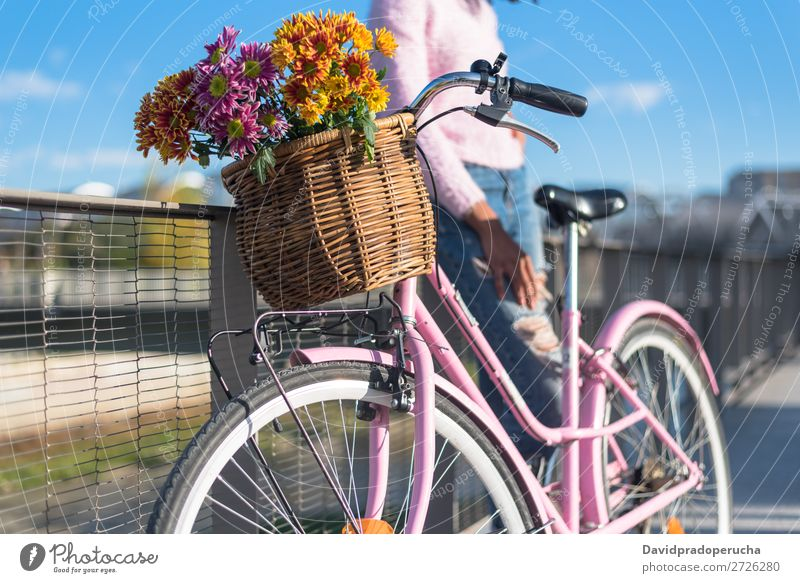 Schwarze junge Frau auf einem Oldtimer-Fahrrad Mädchen altehrwürdig Ausritt schön retro Blume Sonnenstrahlen Glück Blumenstrauß Sommer Jugendliche hübsch