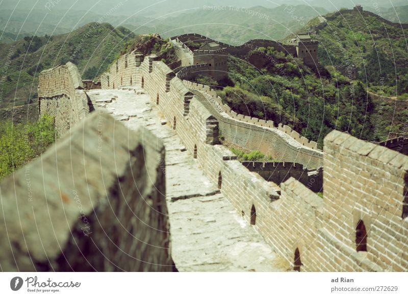 ein Auf und Ab! Umwelt Landschaft Wolkenloser Himmel Frühling Schönes Wetter Baum Gras Sträucher Wiese Wald Hügel Gipfel China Skyline Menschenleer Palast Ruine