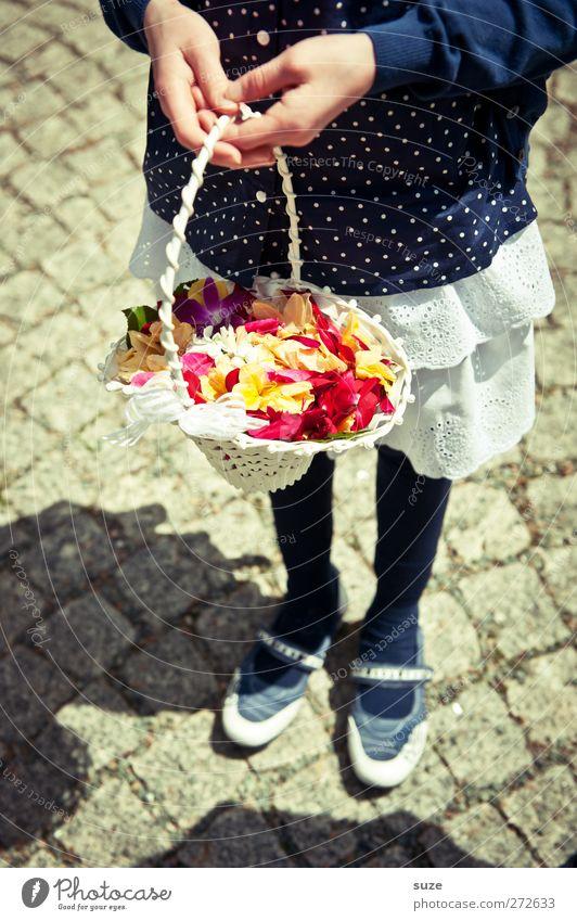 Blumenkind in blauen Strümpf' Mensch Kind Hand Mädchen feminin Glück Blüte Feste & Feiern Schuhe Kindheit Zukunft Hochzeit Kleid festhalten Kitsch