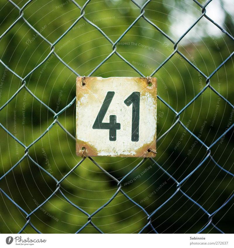 41 Maschendrahtzaun Hausnummer Nummernschild Ziffern & Zahlen Eingang Metall grün schwarz weiß Farbfoto mehrfarbig Außenaufnahme Nahaufnahme Detailaufnahme Tag