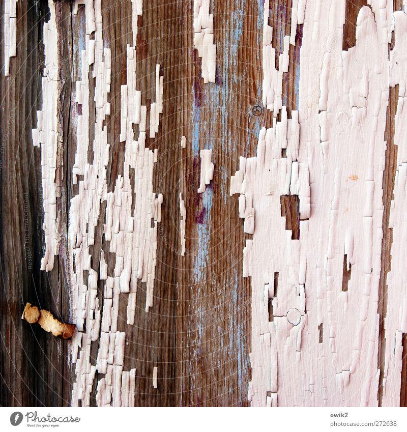 Mittelschicht blau alt weiß schwarz Holz Farbstoff Linie braun rosa Armut Design Wandel & Veränderung Vergänglichkeit verfallen Teile u. Stücke Vergangenheit