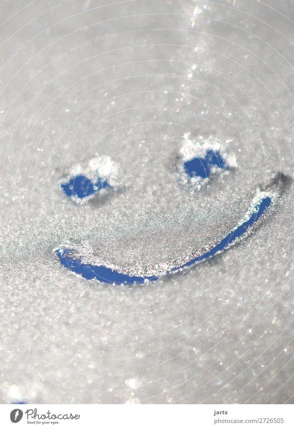 freudich Gesicht Auge Mund Winter Schönes Wetter Eis Frost lachen einfach frisch kalt lustig positiv Freude Zufriedenheit Optimismus Smiley Farbfoto
