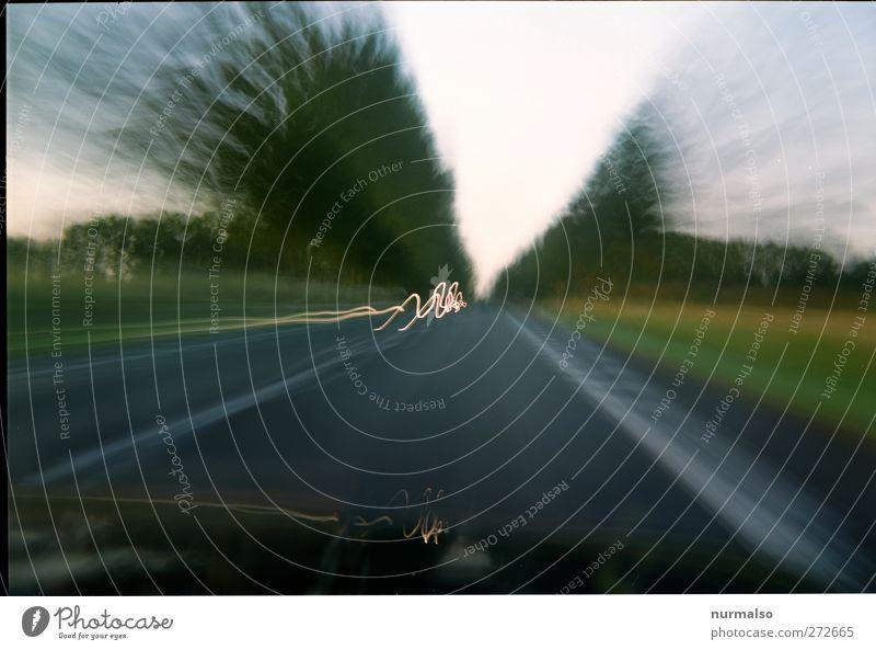 schnell ins Wochenende Lifestyle Ferien & Urlaub & Reisen Ausflug Abenteuer Sommer Kunst Umwelt Natur Verkehr Verkehrsmittel Autofahren PKW Bewegung Stimmung