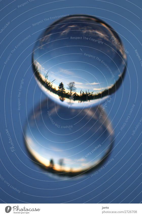 spiegelung Natur Landschaft Himmel Sonnenaufgang Sonnenuntergang Schönes Wetter Baum außergewöhnlich schön blau Horizont Glaskugel Reflexion & Spiegelung