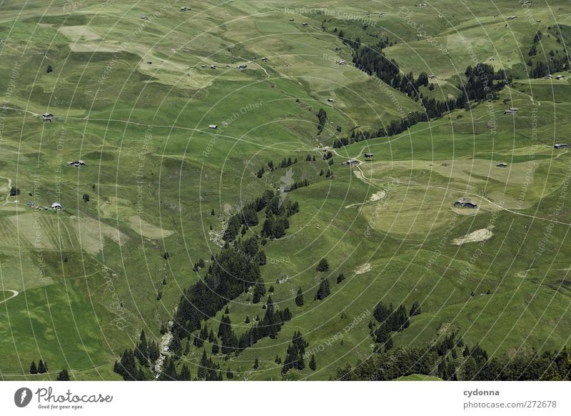 Kleinigkeiten Erholung ruhig Ferien & Urlaub & Reisen Ausflug Abenteuer Ferne Expedition wandern Umwelt Natur Landschaft Sommer Baum Wiese Feld einzigartig