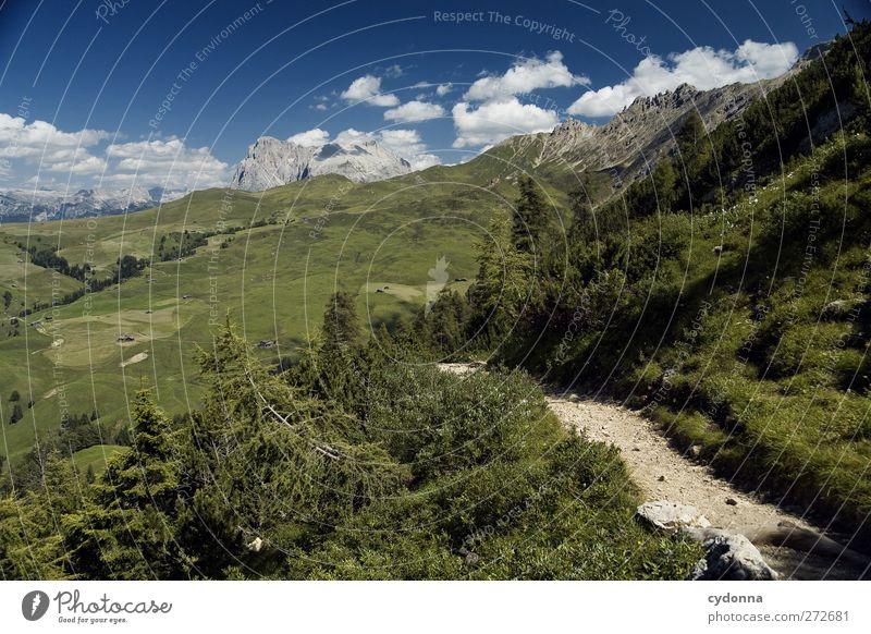 Fernweh Himmel Natur Ferien & Urlaub & Reisen Sommer ruhig Erholung Ferne Umwelt Landschaft Wiese Berge u. Gebirge Freiheit Wege & Pfade träumen Horizont Feld