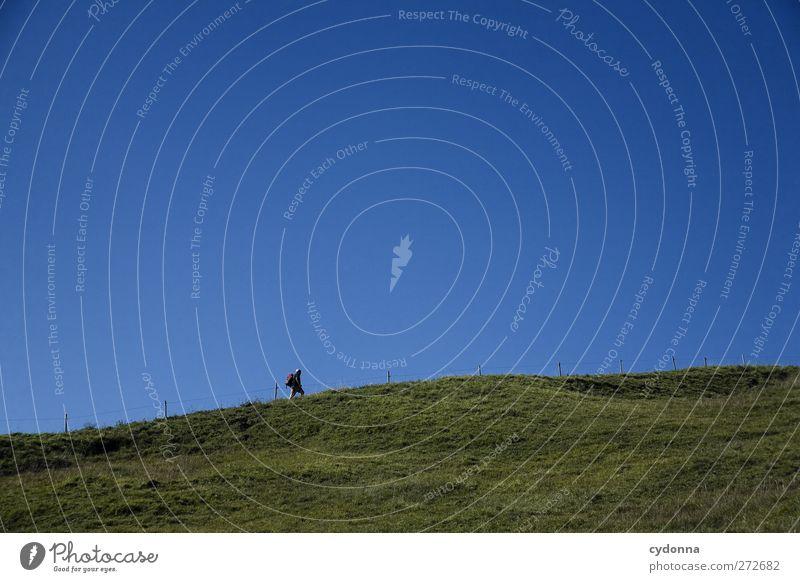 Ein langer Weg Mensch Natur Ferien & Urlaub & Reisen Sommer Einsamkeit Ferne Umwelt Landschaft Wiese Leben Bewegung Freiheit Wege & Pfade Horizont Gesundheit